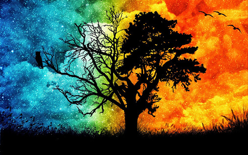 Reparando El árbol Genealógico Con Mi Nombre Evolución Consciente