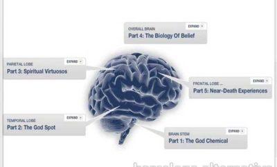 mapa del cerebro místico
