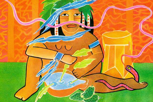 secretos indígenas sobre plantas medicinales