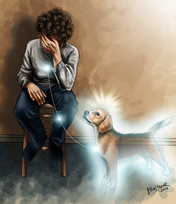 Misión espiritual de tu perro