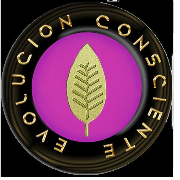 Logo Evolución Consciente